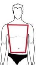 Trapèze body